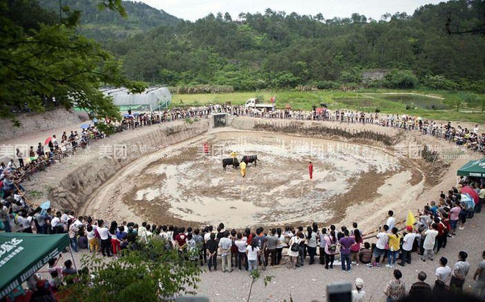 旺吾农庄位于唐先镇长塘头村,著名的石仓岩风景区内,距永康市区15