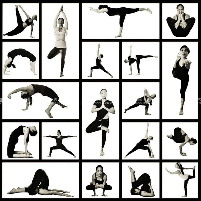 能量流瑜伽,阴瑜伽,阿斯汤伽瑜伽,背痛修复,肩颈理疗,舞韵瑜伽,瘦身图片
