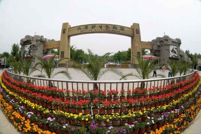 北京野生动物园自驾车票