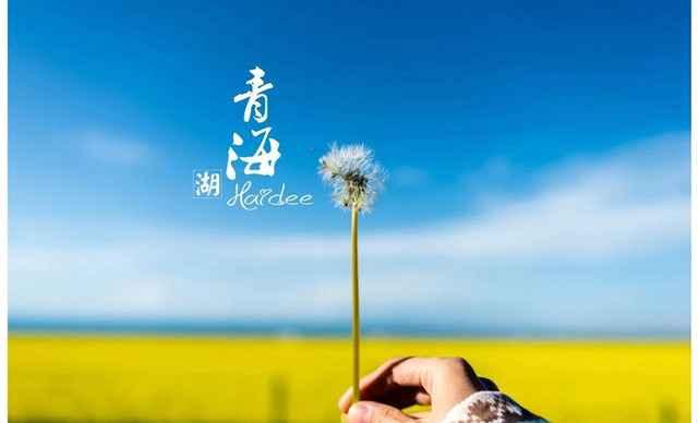 美团网北京郑州青海湖一日游团购美团网团购玩法风火轮游戏幼儿图片