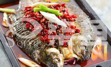 柒鱼主题烤鱼餐厅-美团