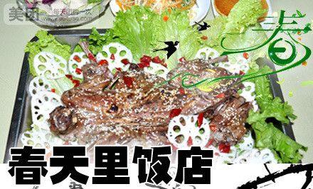 【唐山春天里饭店团购】春天里饭店烤野兔套餐团购