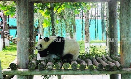 西霞口野生动物园