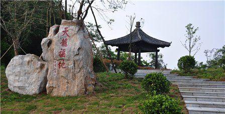 宝华山国家森林公园老年票