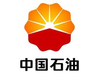 中國石油天然氣股份有限公司