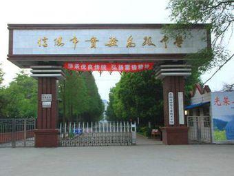 河南省信阳高级中学分校