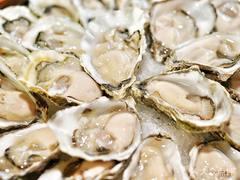 Osteria Oyster Bar生蚝吧&意大利餐厅的图片