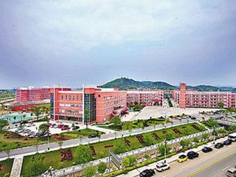 青竹湖湘一外国语学校