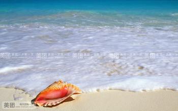 【广州出发】西冲沙滩纯玩1日跟团游*往返直通车位(自由行-美团