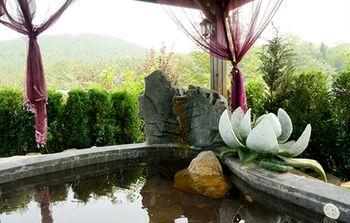 【其它】旅顺天沐温泉+二0三樱花园成人票-美团