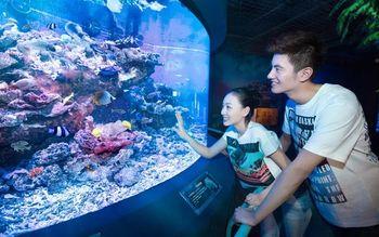 【星海公园】圣亚海洋世界-美团