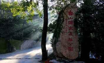 【博山区】鲁山国家森林公园门票(三人票)-美团