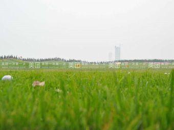 黄金海岸高尔夫球场