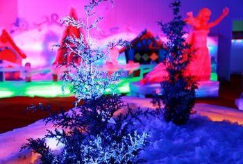 【大兴区】盘龙翠古魔幻冰雕亲子乐园套票(成人票)-美团