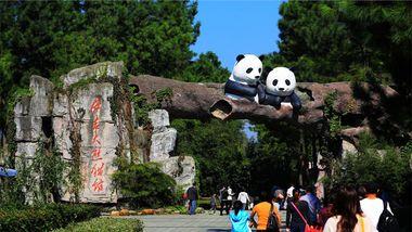 【安吉县】安吉竹博园(含熊猫馆)(成人票)-美团