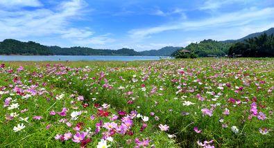 【东源县】万绿谷休闲度假旅游区-美团