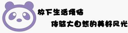 【北京南京红山森林动物园团购】红山森林动物园套票图片