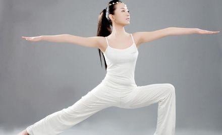 周卡1张,专业的瑜伽享受