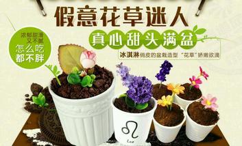 【蚌埠】艺莎盆栽冰淇淋-美团