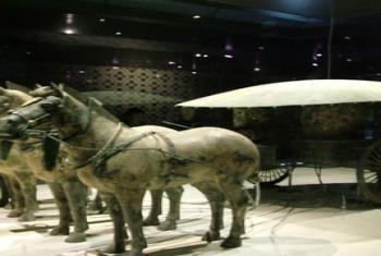 【其它】秦始皇兵马俑博物馆门票+世界八大奇迹馆门票(成人票)-美团