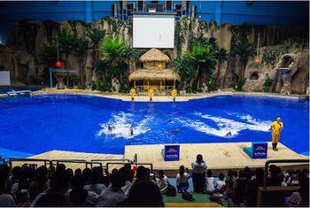 【西直门/动物园】北京动物园门票+北京海洋馆旺季门票成人票-美团