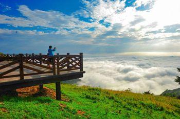【夷陵区】百里荒生态旅游区滑翔伞票-美团