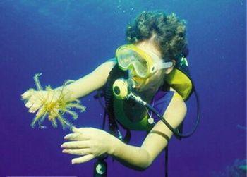 【田东县】阳光海岸潜水体验票成人票-美团