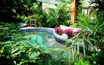 【云岗】南宫五洲植物乐园-美团