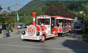 【户县】金龙峡风景区观光小火车票成人票-美团