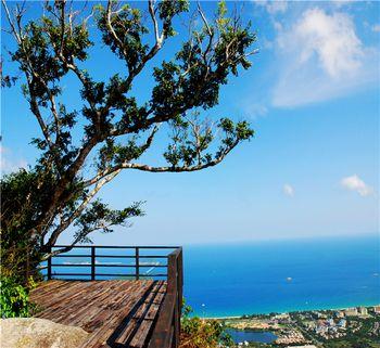 【亚龙湾】亚龙湾热带天堂森林公园-美团