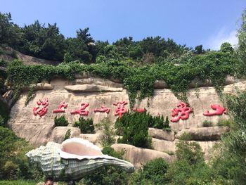 【崂山风景区】崂山风景区巨峰游览区门票成人票-美团