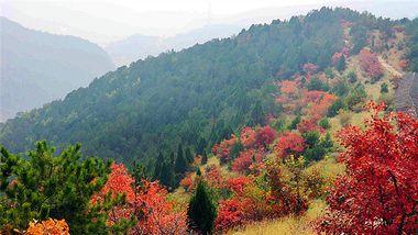 【太原出发】石膏山风景区、龙吟谷景区、天竺寺纯玩1日跟团游*天然氧吧-美团