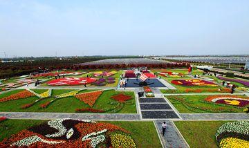 【武汉出发】东西湖郁金香主题公园、石榴红村纯玩1日跟团游*春游赏花 采摘草莓-美团