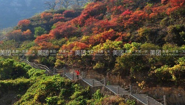 淄川齐山风景区门票