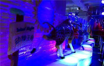 【碑林区】陕西会客厅冰雪大世界-美团
