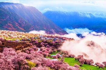 【拉萨出发】雅鲁藏布大峡谷、巴松措景区、卡定沟等3日跟团游*林芝三日游天然氧吧-美团