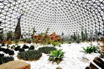 【高新区】大阳山植物园-美团
