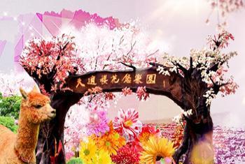 【温泉镇】从化天适樱花悠乐园-美团