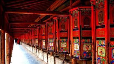 【兰州出发】拉卜楞寺、桑科草原纯玩1日跟团游*去世界最美的转经长廊-美团