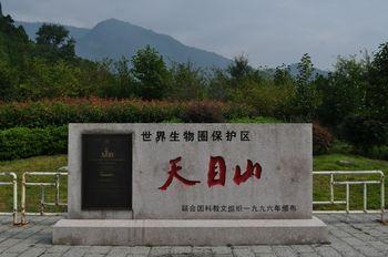 【天目山景区】杭州西天目山禅源寺票+大树王景区票(亲子票1大1小)-美团