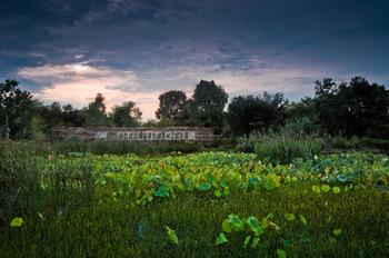 【西溪】西溪国家湿地公园西区门票+景交成人票-美团