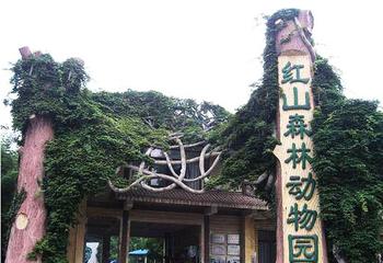 【红山路】红山森林动物园门票(双人票)-美团