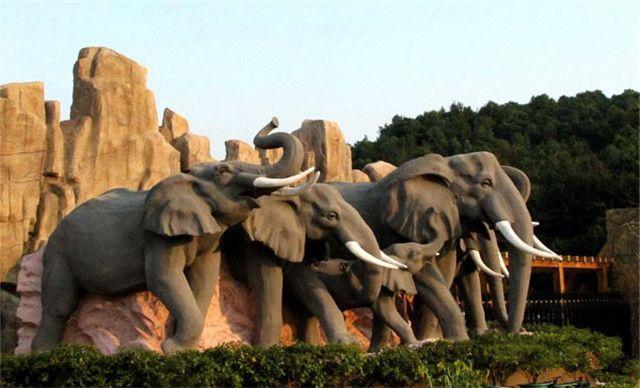 :长沙今日团购:【长沙生态动物园成人票】长沙生态动物园成人票[凭马上游短信消费]