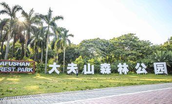 【钟村】大夫山森林(公园内)烧烤场-美团