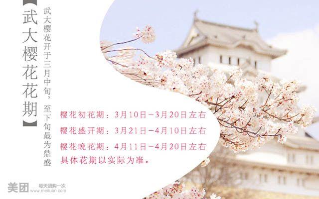 武大手绘樱花地图1