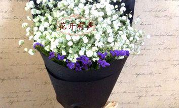 【安平等】花火鲜花全城速递-美团