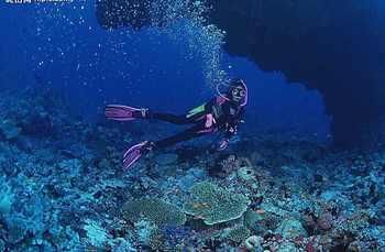 【金沙滩风景区】黄岛金沙滩潜水俱乐部体验潜水不限人群票-美团