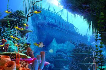 【罗源湾滨海新城】罗源湾海洋世界门票+1景点(成人票)-美团