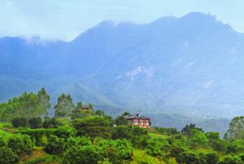 【龙海市】火山岛自然生态风景区-美团