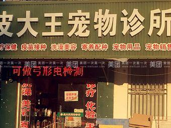 皮大王宠物诊所(如东店)